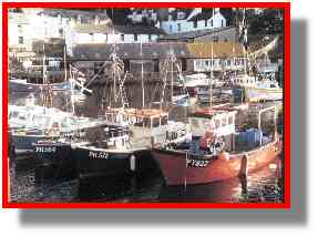 Some of Polperro's fishing boats, Polperro harbour, summer 2000